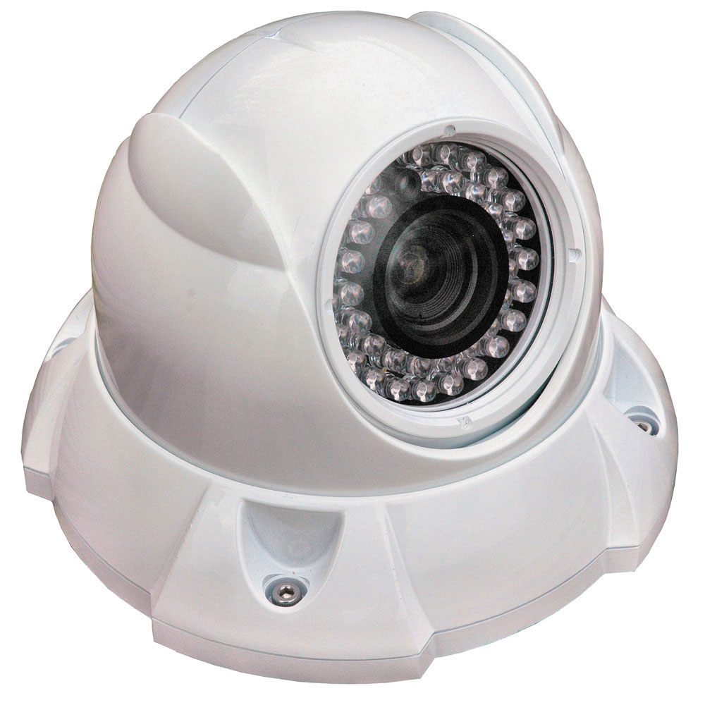 Iris Vari-Focal Dome Camera - Reverse Image - NTSC